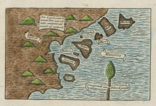 »die Gewürzinseln nebst einem Teil von Gilolo, und einen Nelkenbaum«. Darstellung einer Küste mit Inseln. Auf der braunen Landmasse befinden sich stilisiert grüne Hügel. Entlang der Küste befinden sich Inseln. Sowohl die Landmasse als auch die Inseln sind mit Schriftbändern bezeichnet. Am unteren rechten Bildrand befindet sich ein Nelkenbaum.