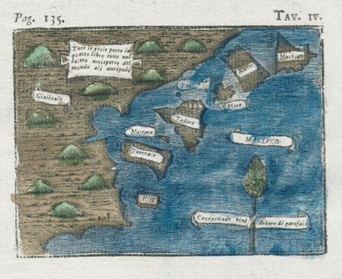 Carte enluminée IV »Malluco«. Die Karte von Carlo Amoretti greift die zuvor beschriebene Karte von Friedrich Christian Kries erneut auf, jedoch ist die Karte leicht abgewandelt in den Formen der Küste und der Inseln. Auf der braunen Landmasse befinden sich stilisiert grüne Hügel. Entlang der Küste befinden sich Inseln. Sowohl die Landmasse als auch die Inseln sind mit Schriftbändern bezeichnet. Am unteren rechten Bildrand befindet sich ein Nelkenbaum.